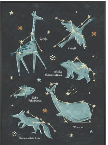 Gwiazdozbiór Domek Elfów (8)